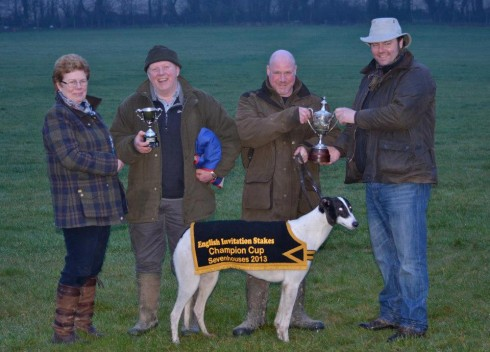 BRITISH BRED DOG WINS AICC COURSING CHAMPIONSHIP